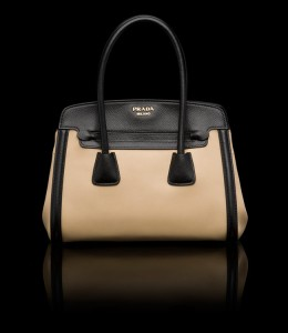 "Imagine the joy you'd get for leaving a ""suspended"" Prada tote for a needy housewife.... (black & tan, please!!)"